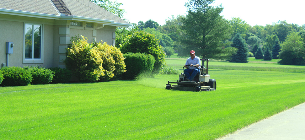 lawn care - fitzwater tree and lawn care